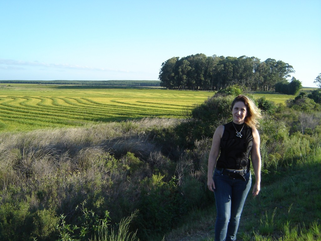 Plantação de arroz a caminho do Jaguarão