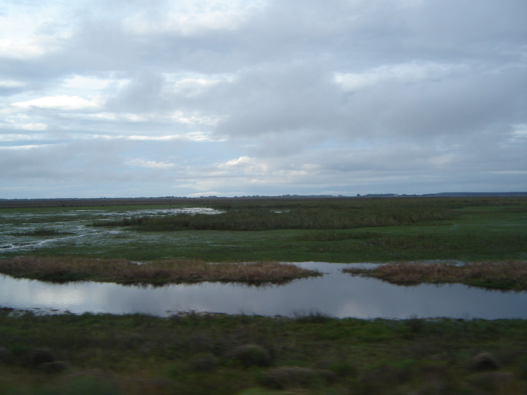 Reserva do Taim, Rio Grande
