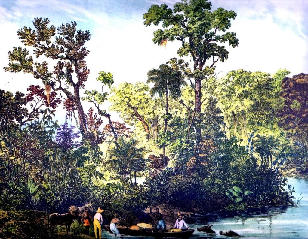 Rugendas, Rio Parahyba, imagem  dominio Público