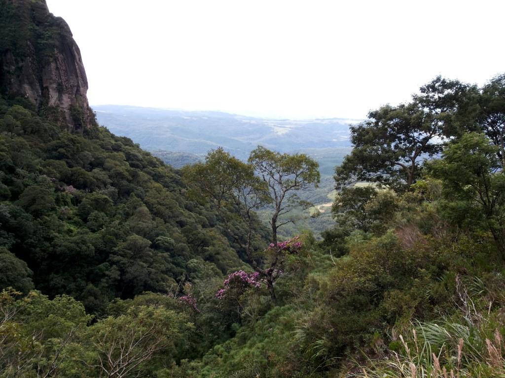 Serra Rio do Rastro 6