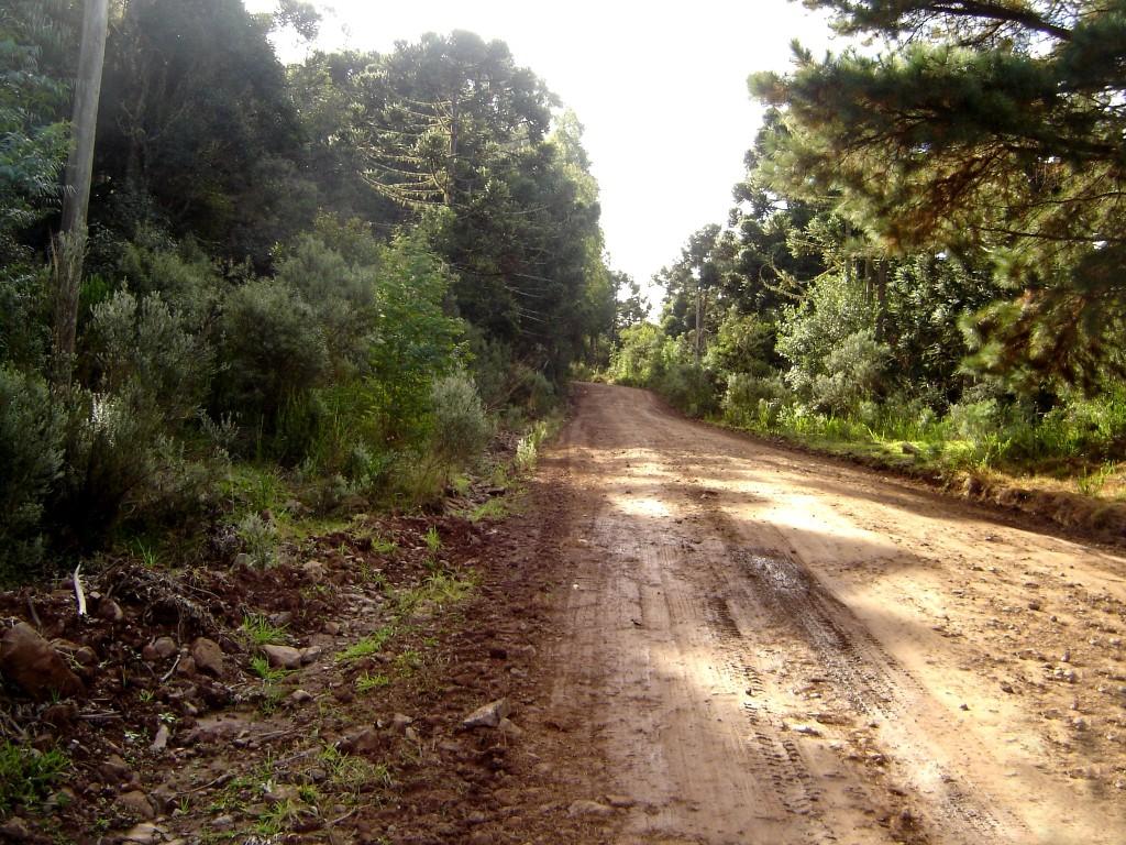 Caminho para o Parque estadual de Aparados da Serra